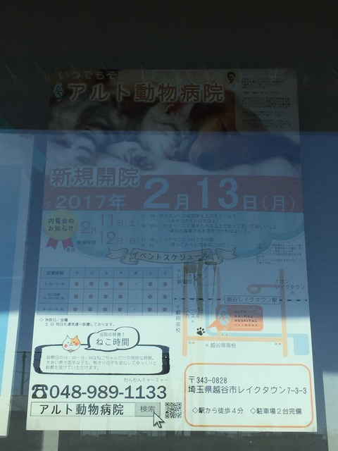 2017-02-04-12-40-39